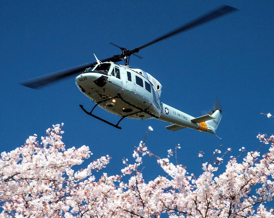 April 11, 2019 - A U.S. Air Force 459th Airlift Squadron UH-1N Iroquoise helicopter flies over cherry blossom trees at Yokota Air Base, Japan. The 459 AS provides responsive airlift super for distinguished visitors, as well as aeromedical evacuations, search and rescue, and priority airlift missions throughout the Pacific. (Image created by USA Patriotism! from U.S. Air Force photo by Senior Airman Donald Hudson)