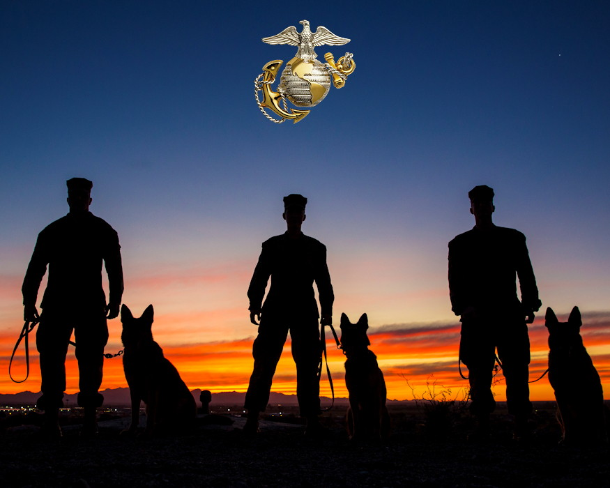 January 18, 2019 - U.S. Marines with the Provost Marshall's Office, K9 Section, Headquarters and Headquarters Squadron, Marine Corps Air Station (MCAS) Yuma with their Military Working Dogs (MWDs) on MCAS Yuma at sundown. MWDs are trained to subdue or intimidate suspects before having to use lethal force; they are also used for detecting explosives, narcotics, and other harmful materials. (Image created by USA Patriotism! from U.S. Marine Corps photo by Sgt. Allison Lotz)