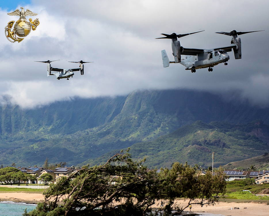 May 11, 2019 - MV-22B Ospreys attached to Marine Medium Tiltrotor Squadron 163, 11th Marine Expeditionary Unit (MEU), arrive at Landing Zone Eagle aboard Marine Corps Base Hawaii. The Marines and Sailors of the 11th MEU conducted helicopter insertion training aboard the base to improve vital skillsets and teamwork. (Image created by USA Patriotism! from U.S. Marine Corps photo by Sgt. Alex Kouns)