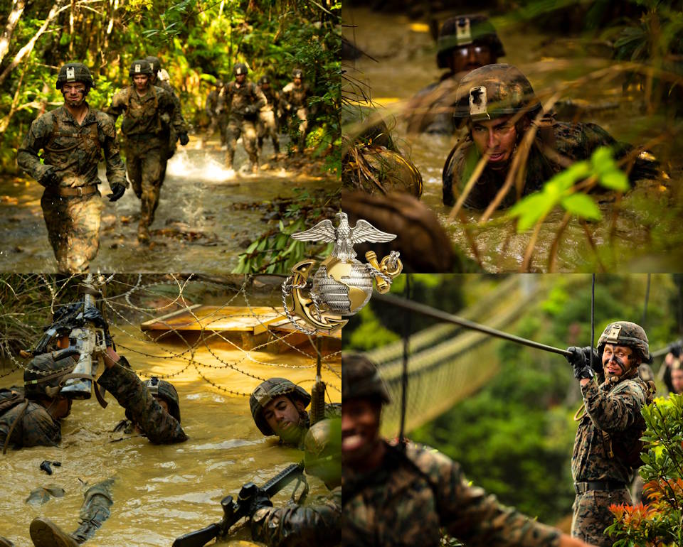 March 20, 2020 - U.S. Marines with 3rd Battalion, 2nd Marine Regiment, currently attached to 3rd Marine Division as part of the Unit Deployment Program undergo the challenging endurance course at the Jungle Warfare Training Center on Okinawa, Japan. (Image created by USA Patriotism! from U.S. Marine Corps photo by Lance Cpl. Jackson Dukes)