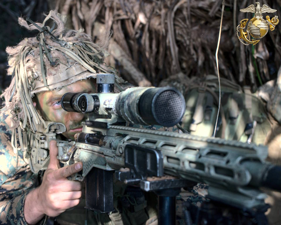 March 16, 2021 - A camouflaged sniper with 3d Battalion, 3d Marines prepares to fire at a target during exercise Cast Away 21.1 on near Okinawa, Japan. (Image created by USA Patriotism! from U.S. Marine Corps photo by Capt. Nicholas Royer.)