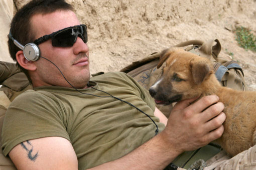 U.S. Marine Corps Lance Cpl. James R. Borzillieri plays with a puppy during his break between patrols in Marja, Afghanistan, May 9, 2010. Borzillieri is assigned to Mortar Platoon, Weapons Company, 1st Battalion, 6th Marine Regiment. U.S. Marines and Afghan soldiers went out on a 48-hour operation, where they manned checkpoints and conducted patrols around the market and residential areas in the center of the city.